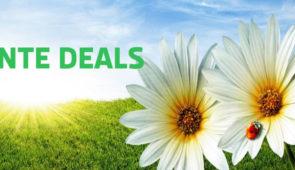 Lente Deals